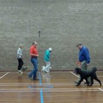 Puppy Dog Training Classes Bearsden