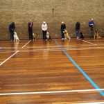 Puppy Dog Training Classes Glasgow-01