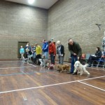 Puppy Dog Training Classes Glasgow-04