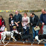 Puppy Dog Training Classes Glasgow