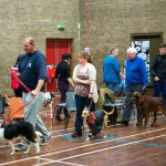 Puppy Dog Training Classes Glasgow-09