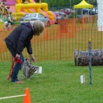 Puppy Dog Training Classes Milngavie-01