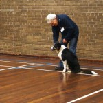 Puppy Dog Training Classes Milngavie-08