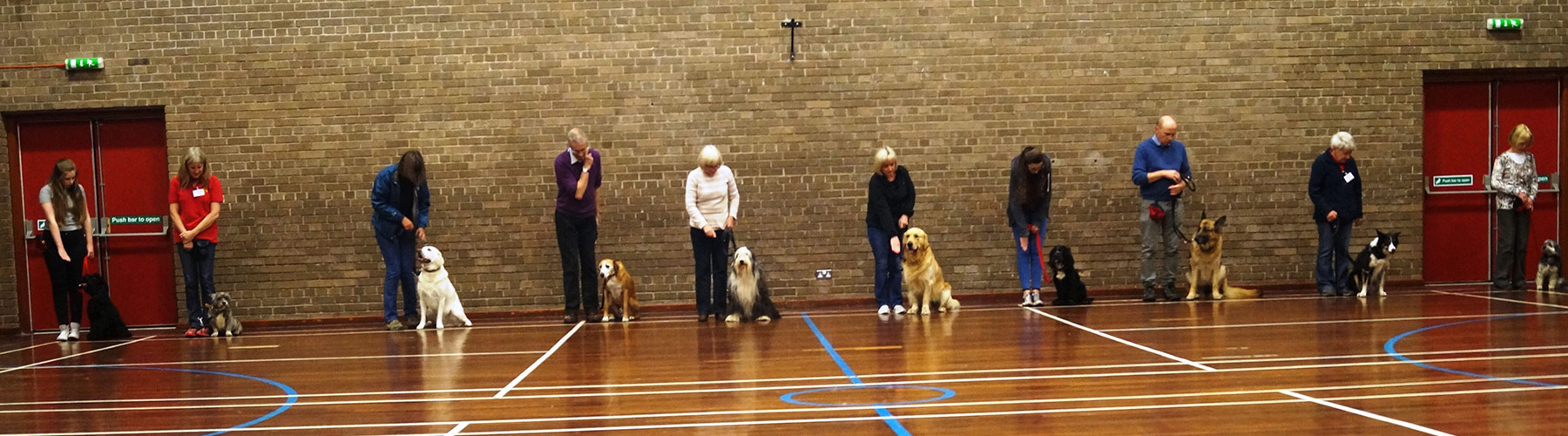 Puppy Dog Obedience Training Classes Glasgow Scotland